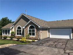 Photo of 234 Shaw Dr, Kent, OH 44240 (MLS # 4202042)