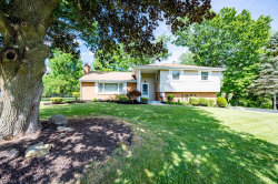 Photo of 291 Glenview Rd, Canfield, OH 44406 (MLS # 4202592)
