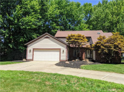 Photo of 7661 Aster Dr, Mentor, OH 44060 (MLS # 4202754)