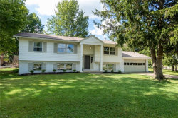 Photo of 6948 North Meadow Dr, Concord, OH 44077 (MLS # 4210076)