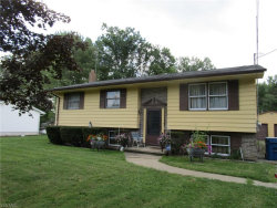 Photo of 17403 Wick Ave, Lake Milton, OH 44429 (MLS # 4211468)