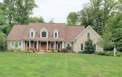 Photo of 7085 Bridlewood Dr, Concord, OH 44077 (MLS # 4219709)