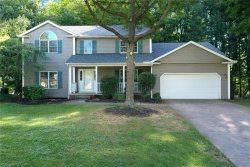 Photo of 12083 Riley Ct, Twinsburg, OH 44087 (MLS # 4220963)