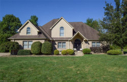 Photo of 1326 Meadowood Cir, Youngstown, OH 44514 (MLS # 4221632)