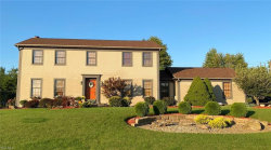 Photo of 30 Russo Dr, Canfield, OH 44406 (MLS # 4223377)