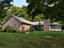 Photo of 9685 Springfield Rd, Poland, OH 44514 (MLS # 4224222)