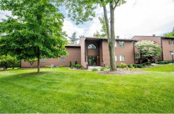 Photo of 1175 East Calla Rd, Unit A225, Poland, OH 44514 (MLS # 4224420)