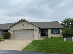 Photo of 3900 Mercedes Pl, Unit 16, Canfield, OH 44406 (MLS # 4224743)