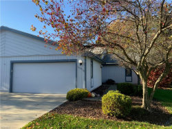 Photo of 10016 Blossom Ln, Twinsburg, OH 44087 (MLS # 4228332)