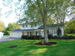 Photo of 12450 Girdled Rd, Concord, OH 44077 (MLS # 4232287)