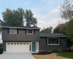 Photo of 9329 Gettysburg Dr, Twinsburg, OH 44087 (MLS # 4232412)
