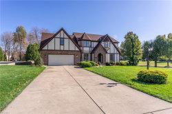 Photo of 30 Squires Ct, Canfield, OH 44406 (MLS # 4237819)