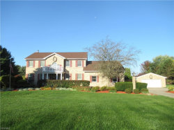 Photo of 9870 New Buffalo Rd, Canfield, OH 44406 (MLS # 4239833)