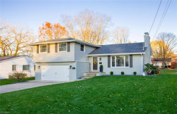 Photo of 6261 Pawnee Pl, Youngstown, OH 44514 (MLS # 4240163)