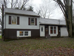 Photo of 2991 East River Rd, Newton Falls, OH 44444 (MLS # 4242970)