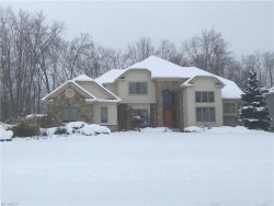 Photo of 38475 Flanders Dr, Solon, OH 44139 (MLS # 3944563)
