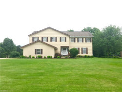 Photo of 8825 Kings Orchard Trl, Chagrin Falls, OH 44023 (MLS # 4008509)