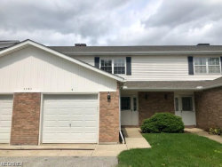 Photo of 1791 Rolling Hills Dr, Unit C, Twinsburg, OH 44087 (MLS # 4057109)