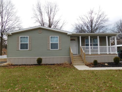 Photo of 9577 South Ave, Unit 86, Youngstown, OH 44514 (MLS # 4061791)