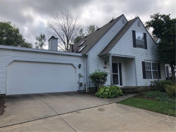 Photo of 2857 Tinkers Ln, Twinsburg, OH 44087 (MLS # 4140913)