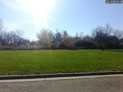Photo of 63 Westwind Dr, Lot 63, Warren, OH 44484 (MLS # 3454923)