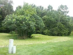 Photo of Clover Ln, Lot 2A, Garrettsville, OH 44231 (MLS # 3644904)