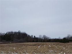 Photo of 5367 Ledge Rock Dr, Lot 19, Rootstown, OH 44272 (MLS # 3874842)