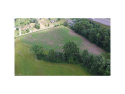 Photo of Bryant Rd, Windham, OH 44288 (MLS # 3913404)