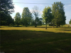 Photo of V/L Hewins Rd, Garrettsville, OH 44231 (MLS # 3914355)