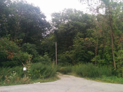Photo of Chamberlin Trl, Twinsburg, OH 44087 (MLS # 3917521)