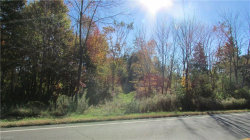 Photo of State Route 44, Mantua, OH 44255 (MLS # 3917554)