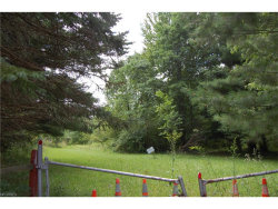 Photo of Valley View Rd, Macedonia, OH 44056 (MLS # 3924314)