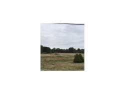 Photo of Fairground, Lot 74, Randolph, OH 44265 (MLS # 3945889)
