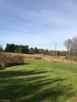 Photo of 1993 State Route 303, Streetsboro, OH 44241 (MLS # 3950108)