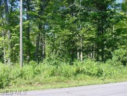 Photo of Lot 1 Main Market Rd, Lot 1, Garrettsville, OH 44231 (MLS # 3953264)
