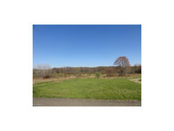 Photo of State Route 44, Mantua, OH 44255 (MLS # 3961979)