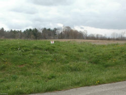 Photo of Wheeler Rd, Garrettsville, OH 44231 (MLS # 3967388)