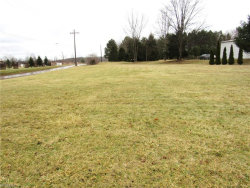 Photo of Silica, Garrettsville, OH 44231 (MLS # 3968288)