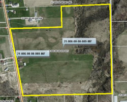 Photo of TBD Mumford Rd, Garrettsville, OH 44231 (MLS # 3972685)