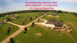 Photo of 30 Bluestone Lake Dr, Lot 30, Mantua, OH 44255 (MLS # 3976274)