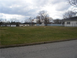 Photo of 628 East Sanderson Ave, Campbell, OH 44405 (MLS # 3978489)
