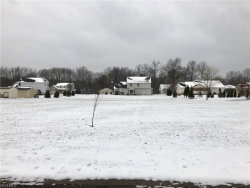 Photo of Joshua Pt, Rootstown, OH 44272 (MLS # 3979271)