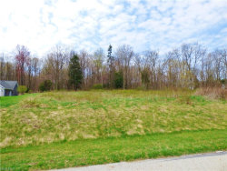 Photo of SL 8 Hazy Morning Dr, Lot 8, Middlefield, OH 44062 (MLS # 3980228)