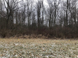 Photo of Sugarbush Dr, Lot 4, Canfield, OH 44406 (MLS # 3981184)