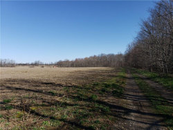 Photo of 7399 Smalley Rd, Windham, OH 44288 (MLS # 3992865)