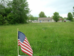 Photo of Lot 286 Green, Lot 286, Windham, OH 44288 (MLS # 4000758)