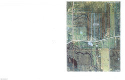 Photo of Kinsman Rd Or St. Rt. 87, Middlefield, OH 44062 (MLS # 4012489)