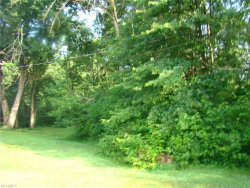 Photo of Lot 56 Main St, Lot 56, Windham, OH 44288 (MLS # 4018238)