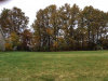 Photo of Stonegate Dr, Cortland, OH 44410 (MLS # 4043742)
