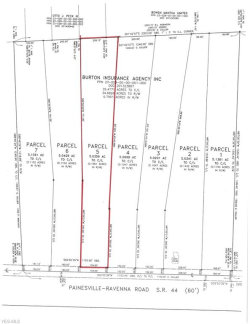 Photo of Lot 5 State Route 44, Lot 5, Mantua, OH 44255 (MLS # 4056641)